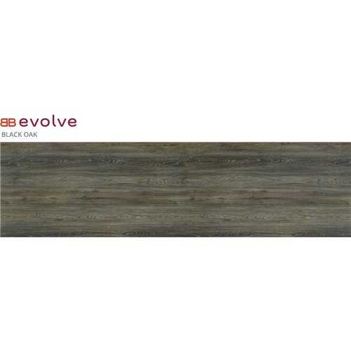 Evolve Black Oak