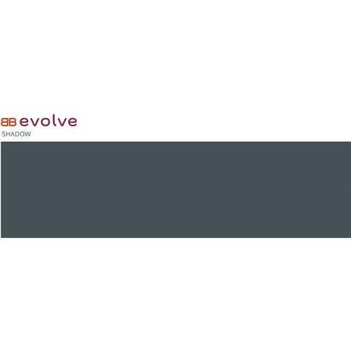 Evolve Shadow