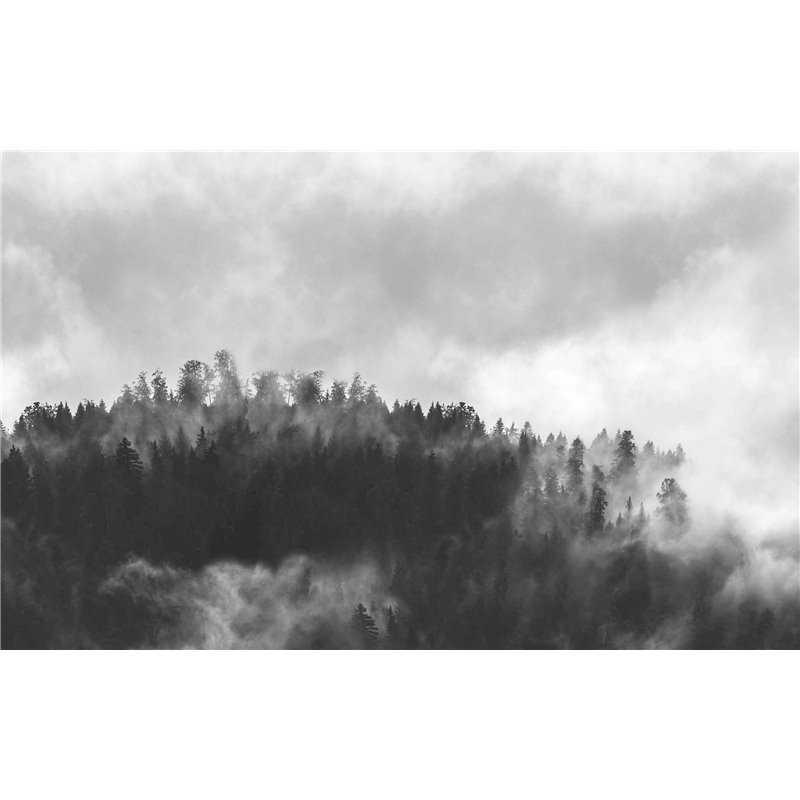 Vista Hazy Forest Acrylic