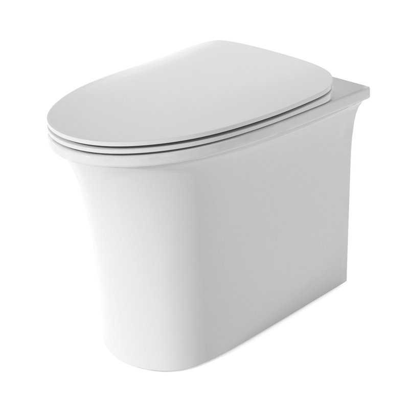 Neo Rimless Back To Wall Toilet - Bretton Park